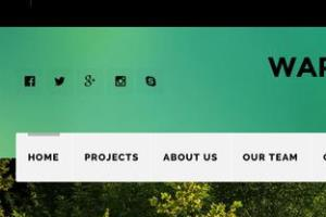 Portfolio for All Web and Mobile